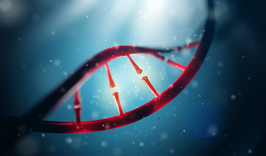 genome-humain-ico-blockchain